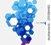 geometric hexagonal shapes... | Shutterstock .eps vector #255384481