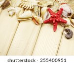 Heap of Sea Shells on wooden background with place for Your text - stock photo