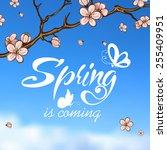 typographic design. lettering... | Shutterstock .eps vector #255409951