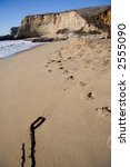 traces on beach | Shutterstock . vector #2555090