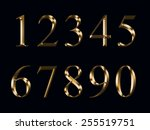 gold numerals  isolated on a... | Shutterstock . vector #255519751