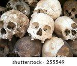 Pile Of Human Skulls.