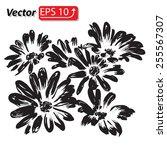 black daisy flower watercolor...