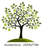 vector pear tree in two seasons ... | Shutterstock .eps vector #255567784