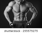 muscular man bodybuilder. man... | Shutterstock . vector #255575275