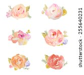 Watercolor Floral Bunches With...