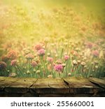 spring background with tabletop.... | Shutterstock . vector #255660001
