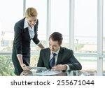 businessman and woman... | Shutterstock . vector #255671044