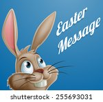 a cute cartoon easter bunny... | Shutterstock .eps vector #255693031