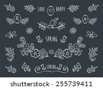 the set of hand drawn... | Shutterstock .eps vector #255739411