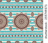 seamless pattern. vintage... | Shutterstock .eps vector #255749371