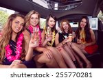 happy friends drinking... | Shutterstock . vector #255770281