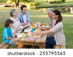 extended family having an... | Shutterstock . vector #255795565