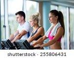 beautiful group of young women... | Shutterstock . vector #255806431