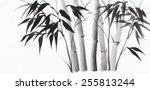 bamboo original watercolor... | Shutterstock . vector #255813244