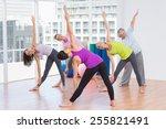 full length of instructor... | Shutterstock . vector #255821491