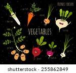 potato  onion  garlic  daikon ... | Shutterstock .eps vector #255862849