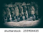army parade   boots close up   Shutterstock . vector #255904435