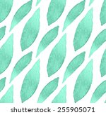 seamless watercolor green... | Shutterstock .eps vector #255905071