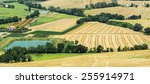 landscape near macerata ... | Shutterstock . vector #255914971