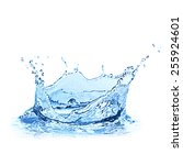 water splash over white... | Shutterstock . vector #255924601