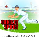 player playing game of cricket... | Shutterstock .eps vector #255954721