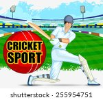 player playing game of cricket... | Shutterstock .eps vector #255954751