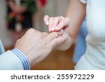 the bride puts a wedding ring... | Shutterstock . vector #255972229