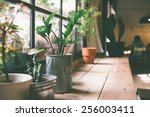 a small plant pot displayed in... | Shutterstock . vector #256003411