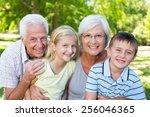 grandparents and grandchildren... | Shutterstock . vector #256046365