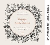 wreath with exotic flowers.... | Shutterstock .eps vector #256058011
