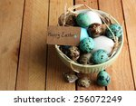 bird colorful eggs in bowl on... | Shutterstock . vector #256072249