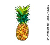 pineapple vector | Shutterstock .eps vector #256073389