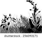 meadows collection   Shutterstock .eps vector #256093171