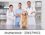 Stock photo veterinarian coworker smiling at camera with dog in medical office 256174411
