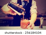 bartender is making cocktail at ... | Shutterstock . vector #256184104