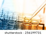 science laboratory test tubes | Shutterstock . vector #256199731