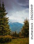 carpathian mountains  | Shutterstock . vector #256220449