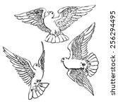 three flying handdrawn doves... | Shutterstock . vector #256294495
