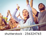 excited music fans up the front ... | Shutterstock . vector #256324765