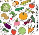 vegetable pattern  seamless... | Shutterstock .eps vector #256342801