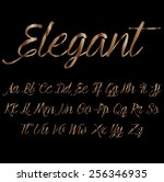 decorative font   metallic... | Shutterstock .eps vector #256346935