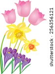 an illustration of some spring... | Shutterstock .eps vector #256356121