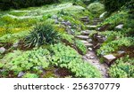 Stony Path And Stairs In The...