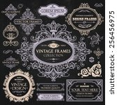 vector vintage collection ... | Shutterstock .eps vector #256456975