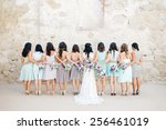 bridesmaids   Shutterstock . vector #256461019