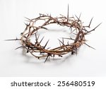Crown Of Thorns On A White...