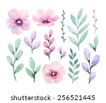 Stock photo watercolor flowers 256521445