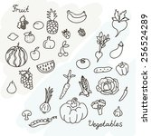 vector illustration of fruits... | Shutterstock .eps vector #256524289