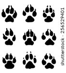 print paws of dogs  vector | Shutterstock .eps vector #256529401